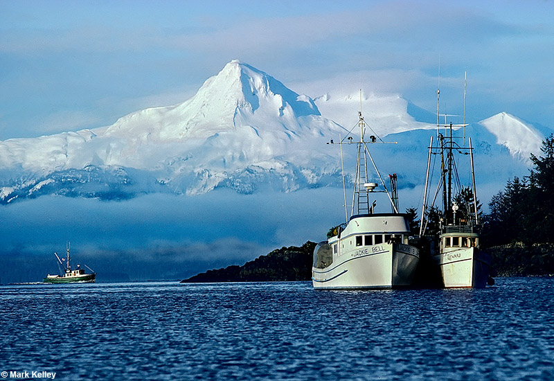 Lynn Canal, Commercial Fishing - Image 2851