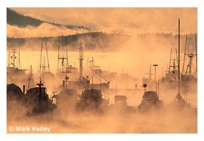 Auke Bay Winter Docks 951