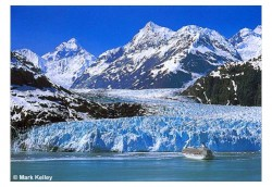 Margerie Glacier and Cruise Ship 946