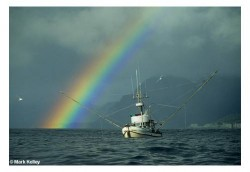 Rainbow Boat 918 Mark Kelley