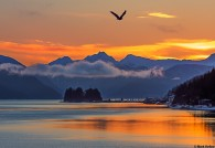 Juneau Gastineau Channel Sunrise Mark Kelley
